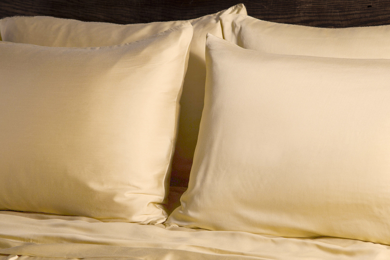 Ecosheex bamboo pillowcases honey1 copy 2